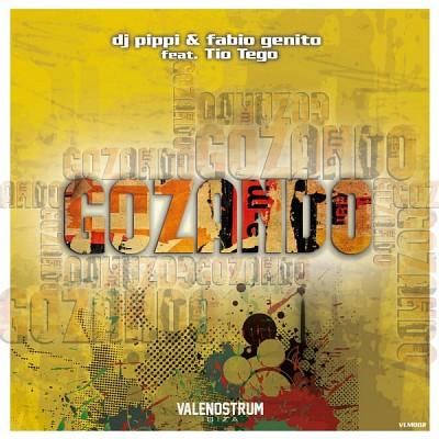 Dj Pippi & Fabio Genito feat Tio Tego Gozando.